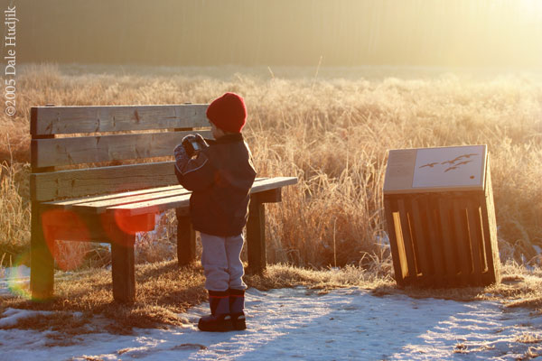 Boy Photographing a Bench